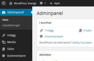 adminpanel wordpress webbyrå Stockholm
